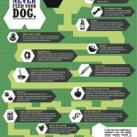 Foods Dogs and Cats should NOT EAT