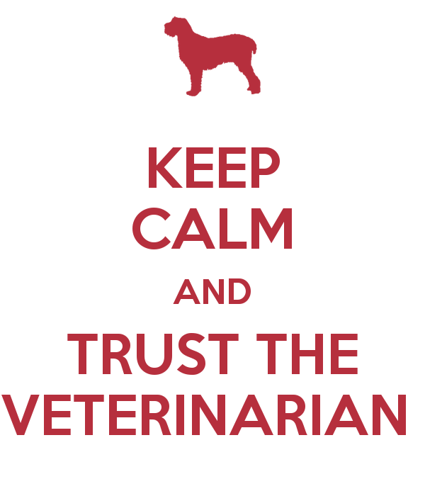 keep-calm-and-trust-the-veterinarian-
