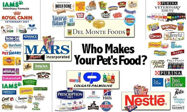 American Pet Food Company