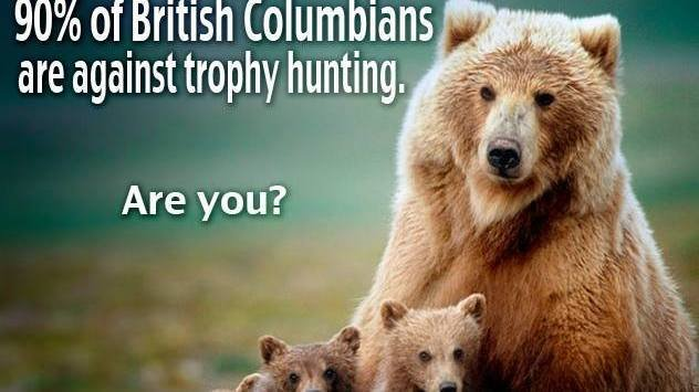the negative effects of stopping hunting and trophy hunting to the animal ecosystem Put no hunting sign in all conservation parks hunting is dangerous not only to animals, but hikers and nature lovers the sport of hunting have very negative impact on the environment trophy hunting and poaching is a crime against our ecosystem poachers killed over 30,000 elephants last year.