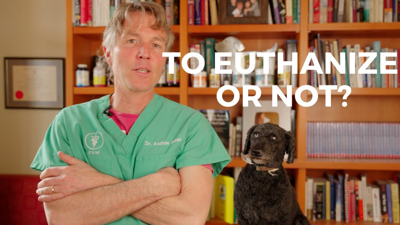 Problems With Euthanasia