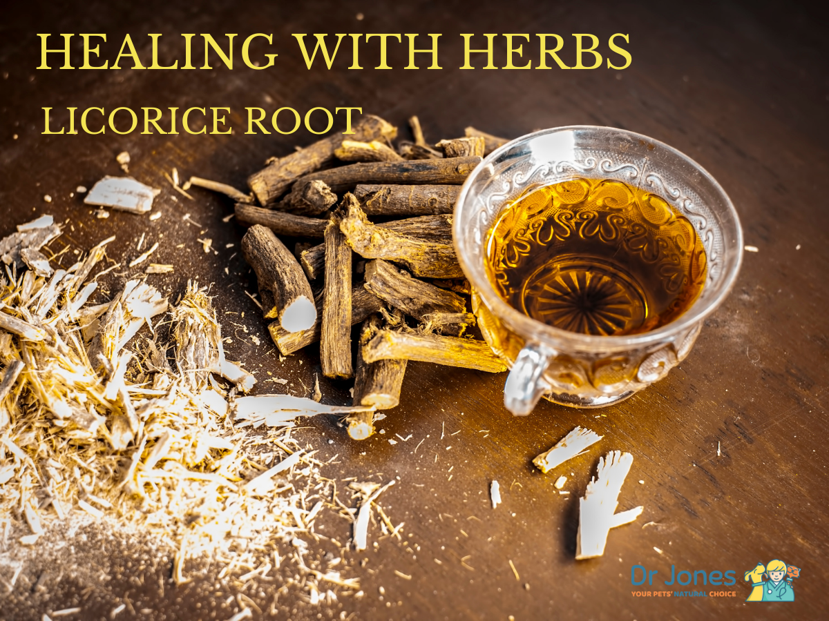 Healing With Herbs: Licorice Root