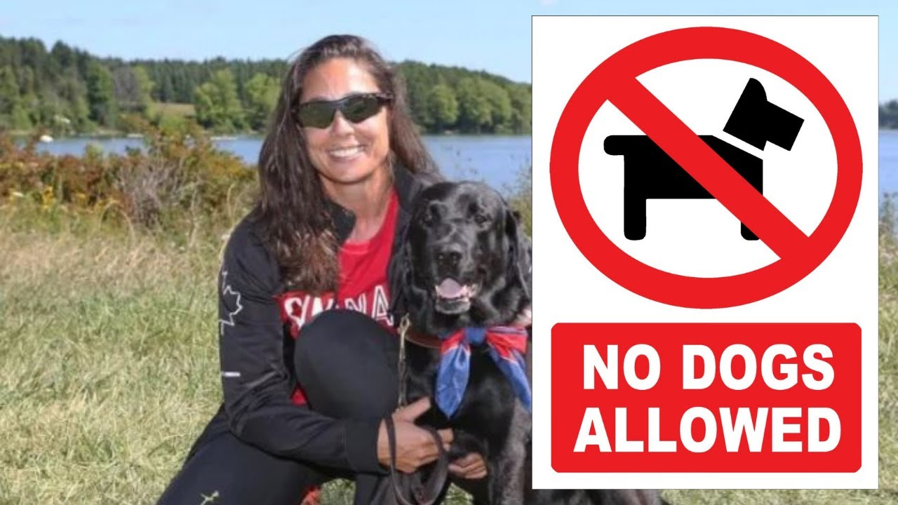 No Dogs Allowed: Paralympian denied hotel room because of guide dog