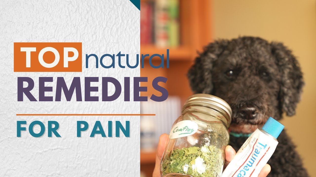 Best 5 Natural Remedies for Pain and Inflammation